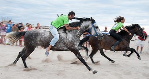dibaro fotos carrera de caballos