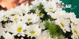 Ya es primavera en DiBaró